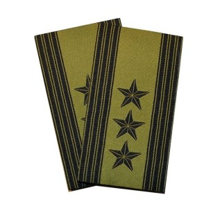 Oberst - Grønn felt hær - Forsvaret