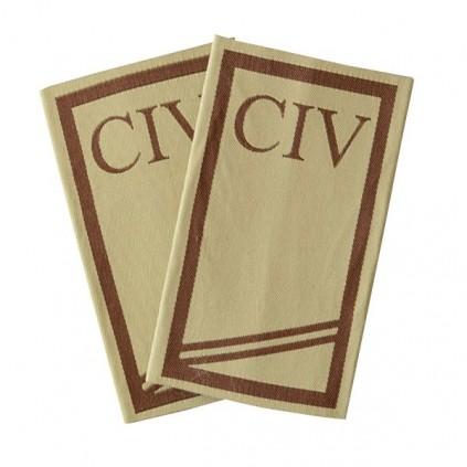 CIV - Forsvaret ørken - CR-4