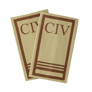 CIV - Forsvaret ørken - C-4