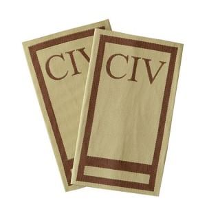 CIV - Forsvaret ørken - C-6