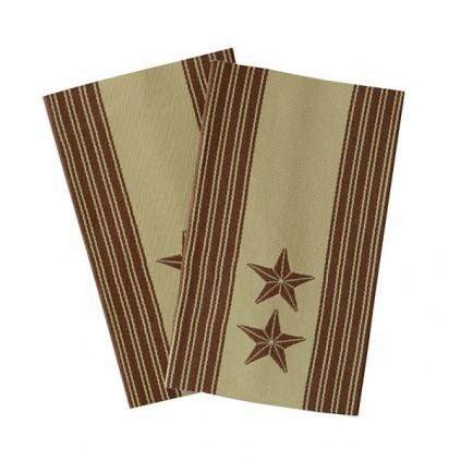 Oberstløytnant - Ørken hær og luft - Forsvaret