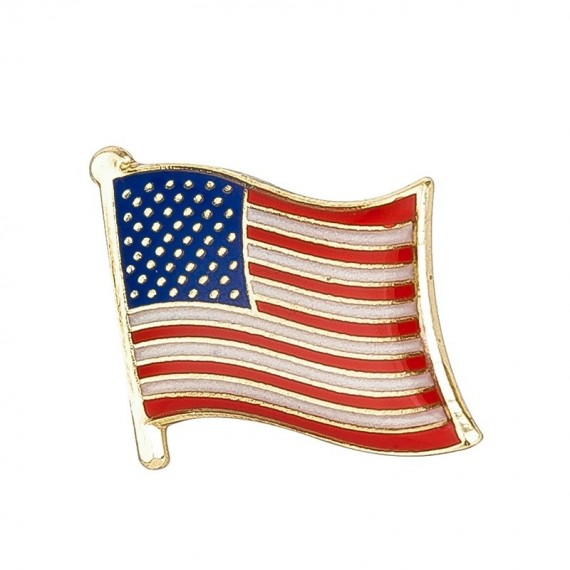 Pins - Flagg - USA