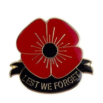 Pins - Lest we forget